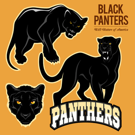 Black panthers - vector set isolated illustration. Ilustrace