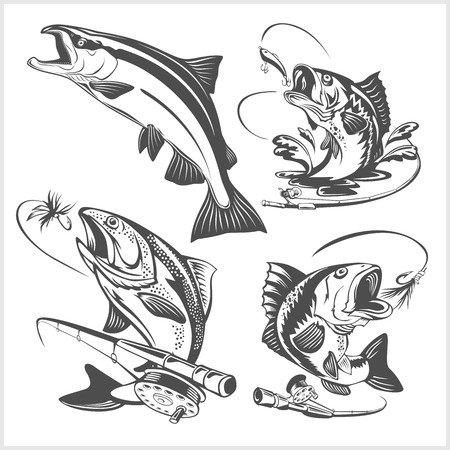 Vintage trout fishing emblems and design elements on white