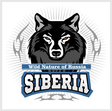 Siberian Wolf - a wolf head on the white background. Russian Siberia Illustration