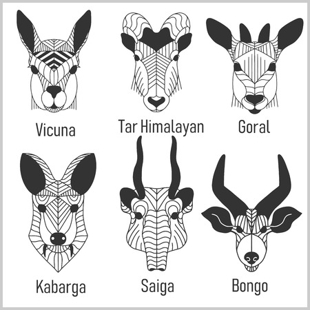 Set of polygonal head animals. Polygonal logos. Geometric set of Vicuna, Tar Himalayan, Goral, Kabarga, Saiga, Bongo