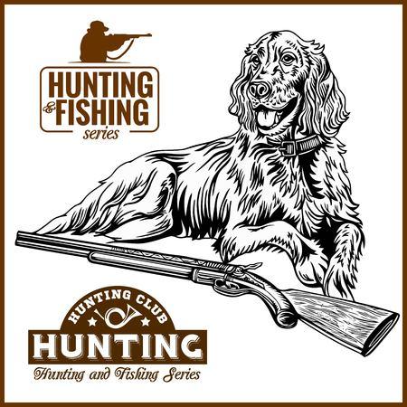 Dog and gun - duck hunt