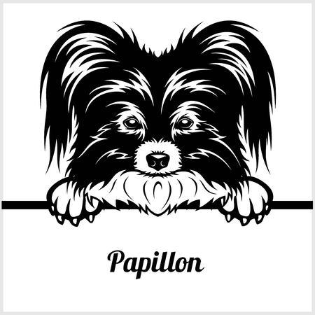 Papillon - Peeking Dogs - - breed face head isolated on white Illustration