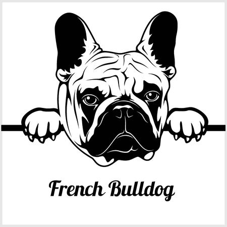 French Bulldog - Peeking Dogs - - breed face head isolated on white Illustration