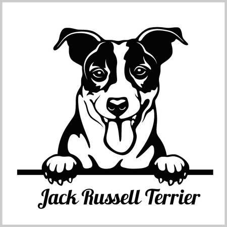 Jack Russell Terrier - Peeking Dogs - breed face head isolated on white Illustration