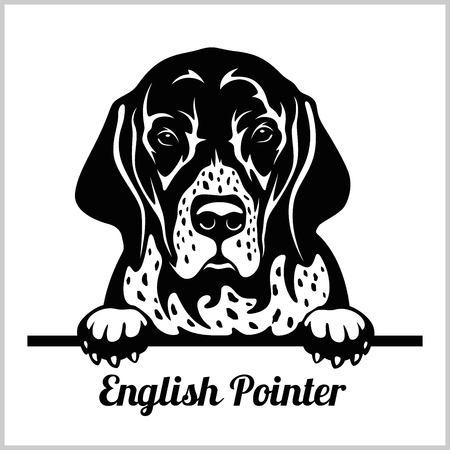 English Pointer - Peeking Dogs - breed face head isolated on white Illustration