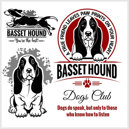 Basset Hound - vector set for t-shirt, logo and template badges Stock Vector - 123075121