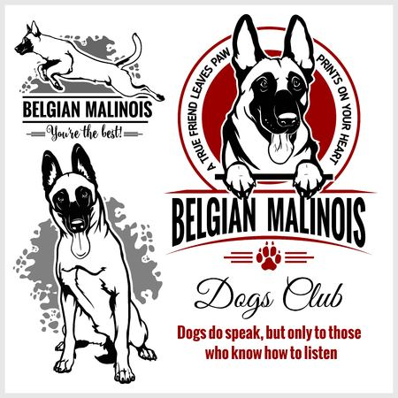 Malinois, Belgian Malinois, Belgian Shepherd Dog - vector set for t-shirt, logo and template badges Çizim