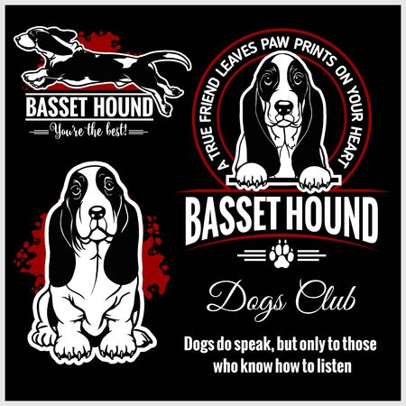 Basset Hound - vector set for t-shirt, logo and template badges Stock Vector - 123075184