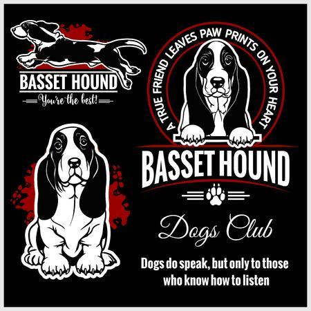 Basset Hound - vector set for t-shirt, logo and template badges Illustration