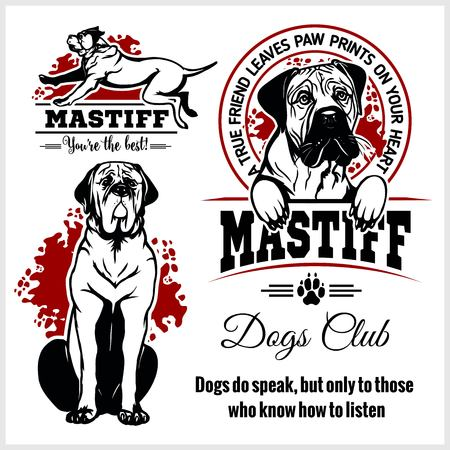 Mastiff - vector set for t-shirt, logo and template badges Ilustrace