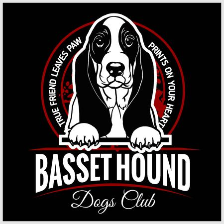 Basset Hound - vector illustration for t-shirt, logo and template badges