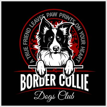 Border Collie - vector illustration for t-shirt, logo and template badges