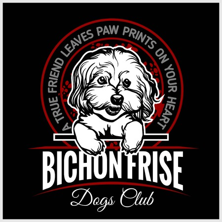 Bichon Frise - vector illustration for t-shirt, logo and template badges