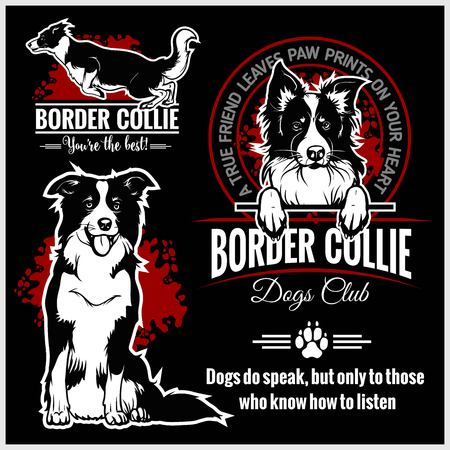Border Collie - vector set for t-shirt, logo and template badges