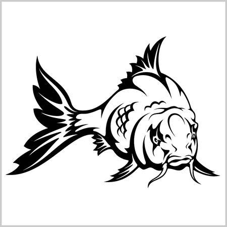 carp fish, vector illustration isolated