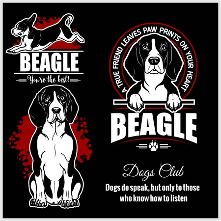 Beagle - vector set for t-shirt, logo and template badges