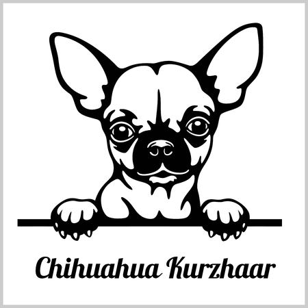 Chihuahua Kurzhaar - Peeking Dogs - breed face head isolated on white Illustration