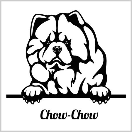 Chow Chow - Peeking Dogs - breed face head isolated on white