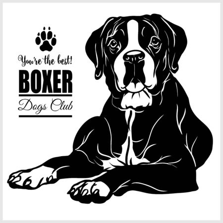 Boxer - vector illustration for t-shirt and template badges Illustration