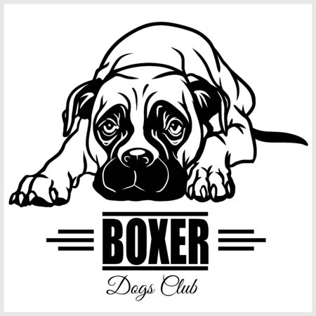 Boxer - vector illustration for t-shirt  template badges in monochrome style