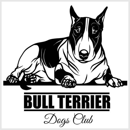 Bull Terrier - vector illustration for t-shirt and template badges