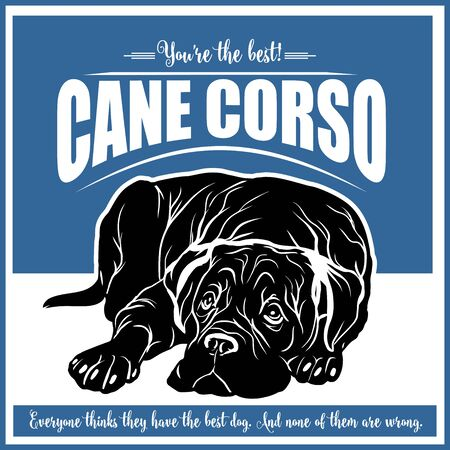 Cane Corso - vector illustration for t-shirt and template badges Illustration