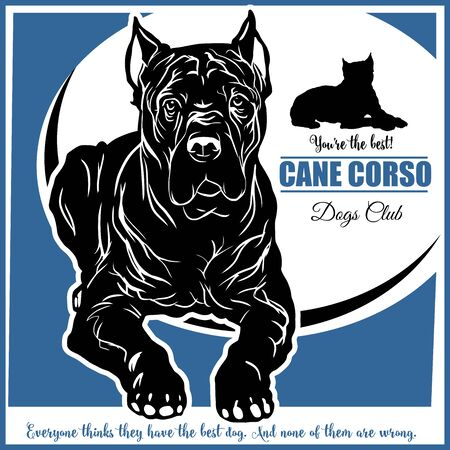 Cane Corso - vector illustration for t-shirt  and template badges