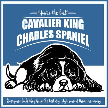 Cavalier King Charles Spaniel - vector illustration for t-shirt and template badges