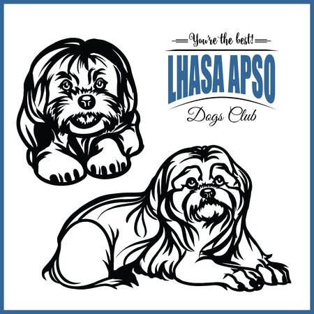 Lhasa Apso - vector illustration for t-shirt and template badges
