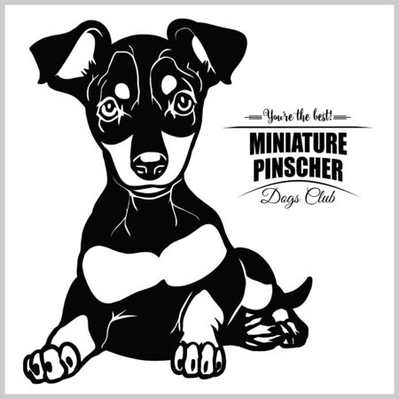 Miniature Pinscher - vector illustration for t-shirt and template badges