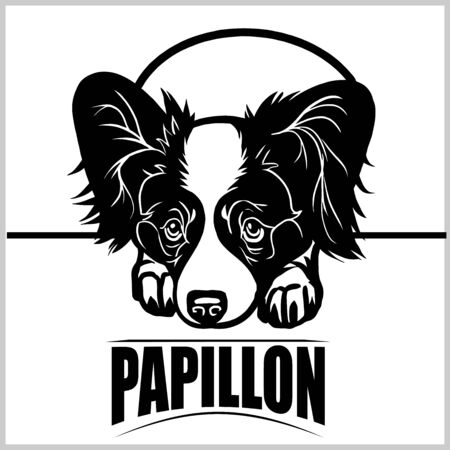 Papillon - vector illustration for t-shirt, logo and template badges