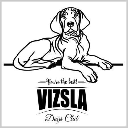 Vizsla - vector illustration for t-shirt, logo and template badges Stock Vector - 132152468