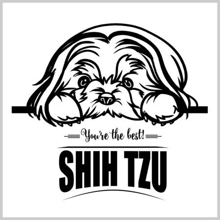 Shih Tzu - vector illustration for t-shirt, logo and template badges Stock Vector - 132152469