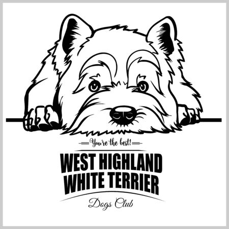 West Highland White Terrier - vector illustration for t-shirt, logo and template badges Stock Vector - 132152476