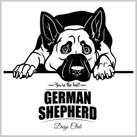 German Shepherd - vector illustration for t-shirt, logo and template badges Illustration