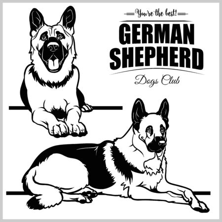 German Shepherd - vector set isolated illustration on white background
