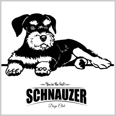 Schnauzer - vector illustration for t-shirt, logo and template badges