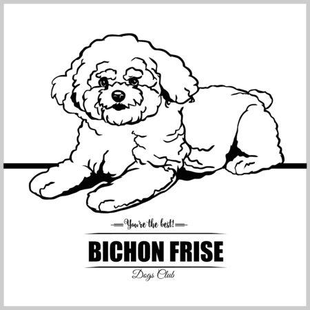 Bichon Frise Dog - vector illustration for t-shirt, logo and template badges