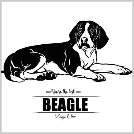 Beagle Dog - vector illustration for t-shirt, logo and template badges Illustration