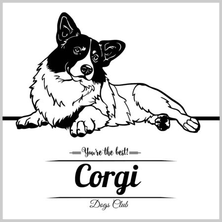Corgi Dog - vector illustration for t-shirt, logo and template badges
