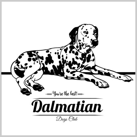 Perro dálmata - ilustración vectorial para camisetas, logotipos e insignias de plantillas