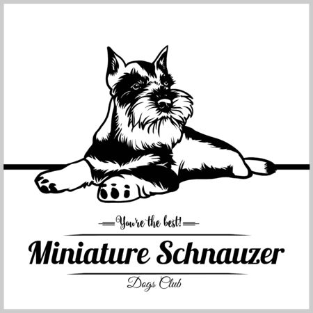 Miniature Schnauzer Dog - vector illustration for t-shirt, logo and template badges