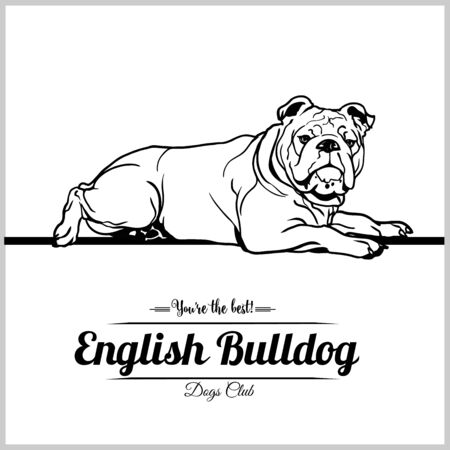 English Bulldog Dog - vector illustration for t-shirt, logo and template badges Illustration
