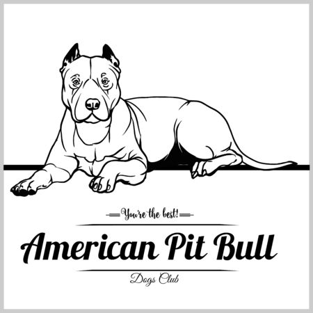 American Pit Bull Dog - vector illustration for t-shirt, logo and template badges