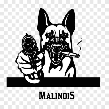 Malinois with guns - Malinois gangster. Head of angry Malinois Ilustracja