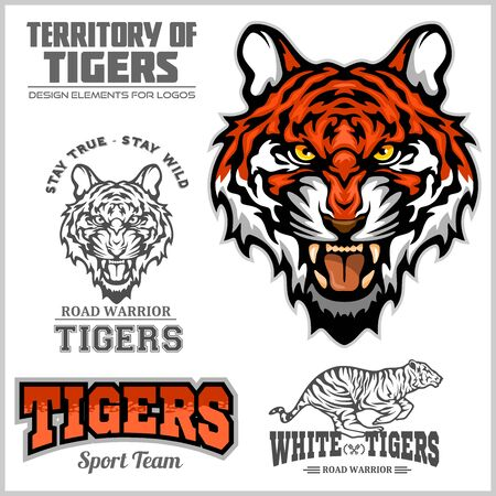 Tiger Set - Vector elements for sport team and logo. Vector illustration for t-shirt and badges