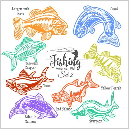 American Fish - vector set 2 for creative design, t-shirt, badge and logo. Isolated on white.