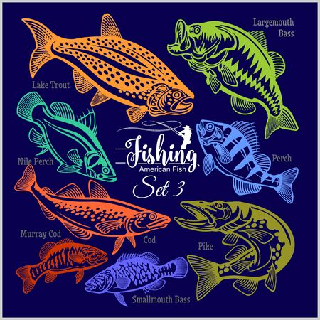 American Fish - vector set 3 for creative design, t-shirt, badge and logo. Isolated on blue.