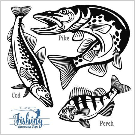 Pêche au brochet, à la perche et à la morue aux États-Unis isolés sur blanc