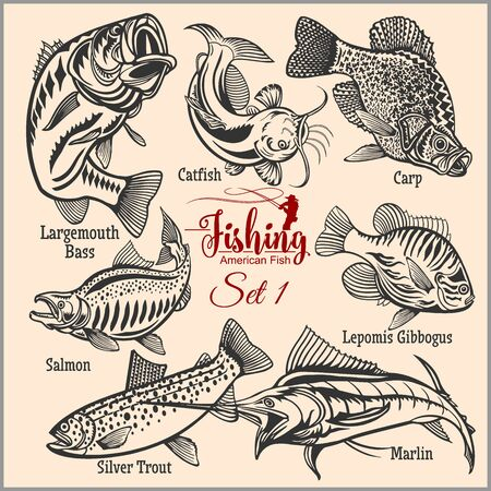 American Fish - vector set 1 for creative design, t-shirt, badge and logo. Isolated on light.